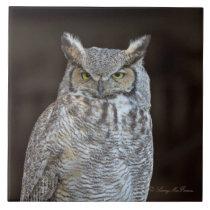 Great Horned Owl Ceramic Tile