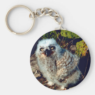 Great Horned Owl Chick Basic Round Button Keychain
