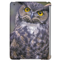 Great Horned Owl Cover For iPad Air
