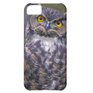 Great Horned Owl Cover For iPhone 5C
