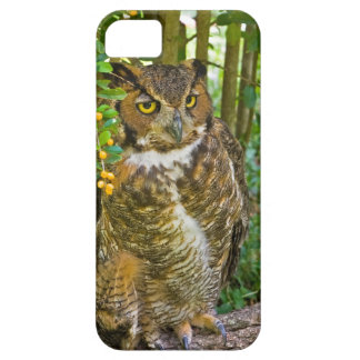 Great Horned Owl Customizable iPhone SE/5/5s Case
