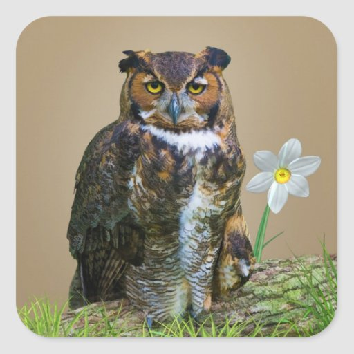 Great Horned Owl Customizable Square Sticker