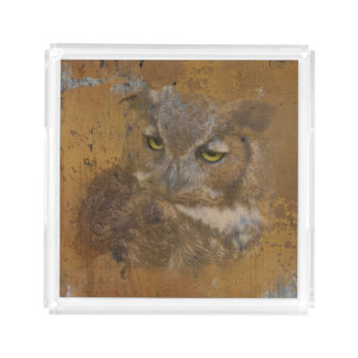 Great Horned Owl Faded on Old Wood Acrylic Tray
