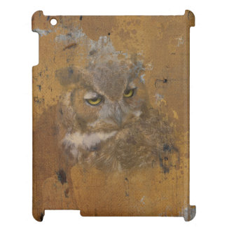 Great Horned Owl Faded on Old Wood, Monogram Cover For The iPad