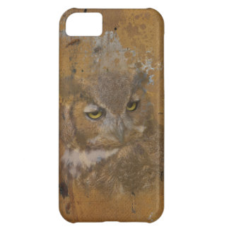 Great Horned Owl Faded on Old Wood, Monogram iPhone 5C Covers