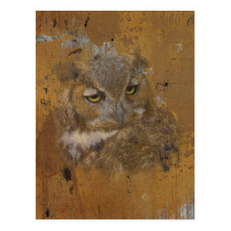 Great Horned Owl Faded on Old Wood, Monogram Postcard