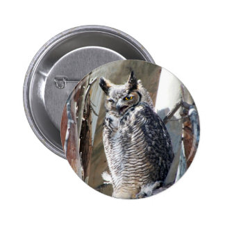 Great Horned Owl Fledgling Photo Design Pinback Button