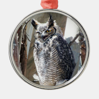 Great Horned Owl Fledgling Photo Design Christmas Tree Ornaments