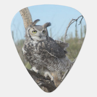 Great Horned Owl Guitar Pick