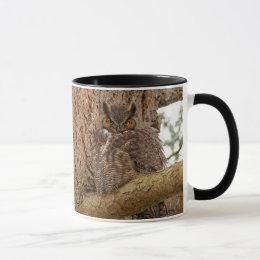 Great Horned Owl in the Douglas Fir Mug