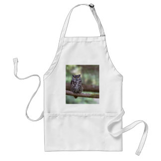 Great Horned Owl in the Old growth Standard Apron