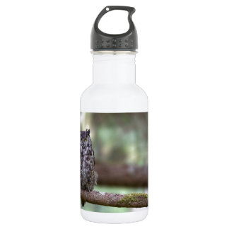 Great Horned Owl in the Old growth 18oz Water Bottle