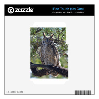 Great Horned Owl in the Tree Skins For iPod Touch 4G
