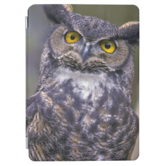 Great Horned Owl iPad Air Cover