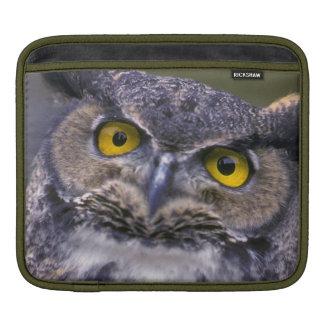 Great Horned Owl iPad Sleeve