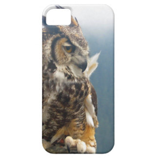 Great Horned Owl iPhone5 Case