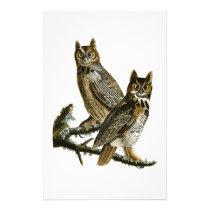 Great Horned Owl John Audubon Birds of America Stationery