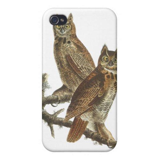 Great Horned Owl, John Audubon Case For iPhone 4