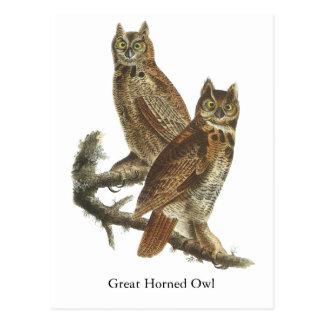 Great Horned Owl, John Audubon Post Cards