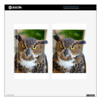 Great Horned Owl Kindle Fire Skins