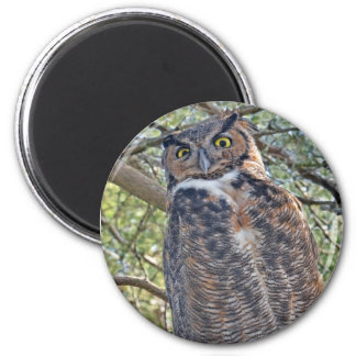 Great Horned Owl 2 Inch Round Magnet