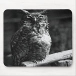 Great Horned Owl Mouse Mats