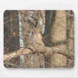 Great Horned Owl Mousepads