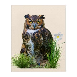 Great Horned Owl on a Log Acrylic Wall Art