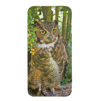 Great Horned Owl on a Log iPhone SE/5/5s/5c Pouch