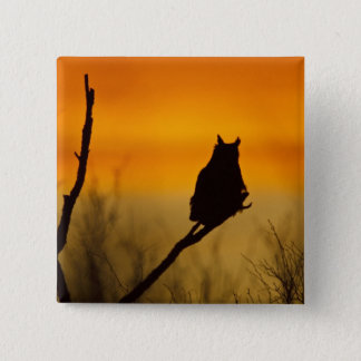Great Horned Owl perched at sunset Pinback Button