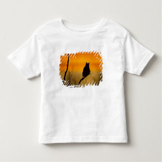 Great Horned Owl perched at sunset Toddler T-shirt