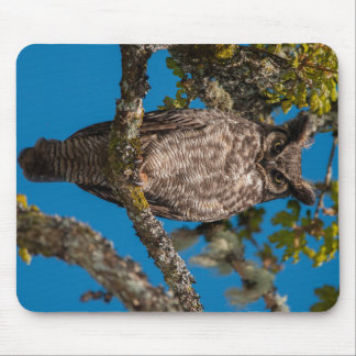 Great Horned Owl perched on a Garry Oak Mouse Pad