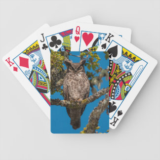 Great Horned Owl perched on a Garry Oak Playing Cards