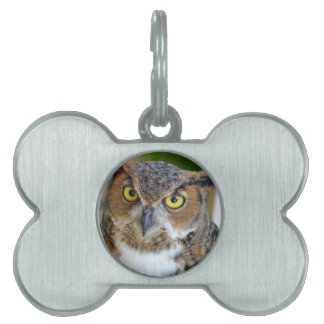 Great Horned Owl Pet Name Tag