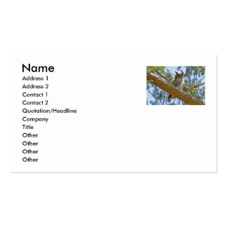 Great Horned Owl Photo Business Card Templates