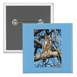 Great Horned Owl Photo Buttons