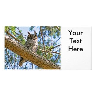 Great Horned Owl Photo Custom Photo Card