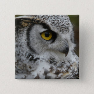 Great Horned Owl Photograph Button