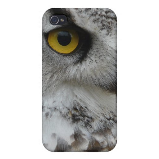 Great Horned Owl Photograph iPhone 4/4S Cover