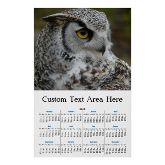 Great Horned Owl Photograph Poster