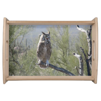 Great Horned Owl Serving Tray