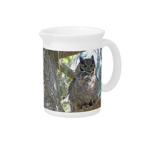 Great Horned Owl Pitcher