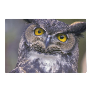 Great Horned Owl Placemat