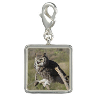 Great Horned Owl Photo Charm