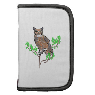GREAT HORNED OWL ORGANIZERS