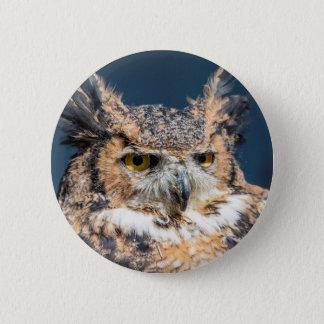 Great Horned Owl Portrait Button
