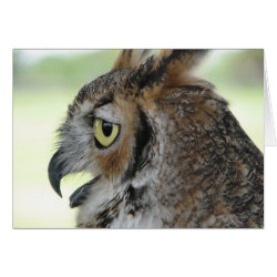 Greeting Card with Great Horned Owl Portraits design