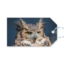 Great Horned Owl Portrait Gift Tags