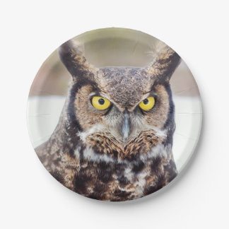 Great horned owl portrait paper plate