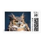 Great Horned Owl Portrait Postage